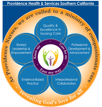 Diagram of nursing practice model